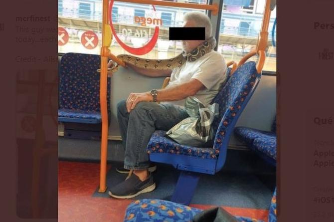 Insólito... Hombre usa serpiente como cubrebocas en camión urbano (+fotos)