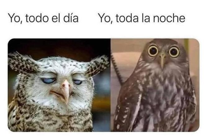 ¡Los mejores memes de la semana!